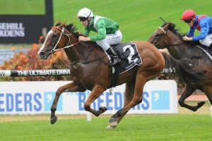 Mossfun has continued her perfect career start by taking out the 2014 Widden Stakes