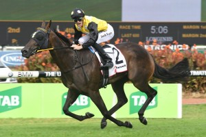 2017 Millie Fox Stakes Results: In Her Time Wins Again