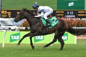 Golden Slipper Favourite She Will Reign Wins Silver Lead-Up