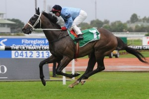 Opinion is clear favourite for success in Moonee Valley Cup betting markets. Photo: Steve Hart