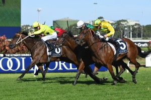 2017 Coolmore Classic Results: Heavens Above In Upset