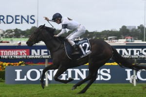 She Will Reign flew home to win the Group 1 Golden Slipper at Rosehill this afternoon. Photo: Steve Hart