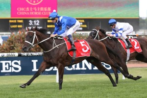 Winx will contest the 2016 Chelmsford Stakes second-up. Photo: Steve Hart