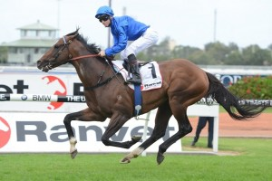 Ravent Stakes betting favoured the 2015 winner Contributer