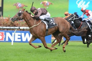 Sweet Idea wins for first Group 1 in The Galaxy at Rosehill.