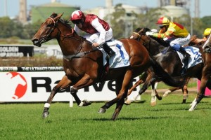 Earthquake will jump from barrier four in the Thoroughbred Club Stakes this Saturday.