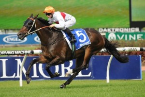 Messene is set to start the 2014 Doncaster Mile as favourite, but will need some luck after drawing barrier 18.