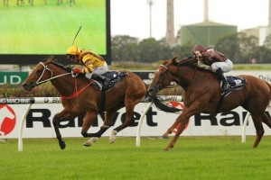Steps In Time wins 2014 Coolmore Classic