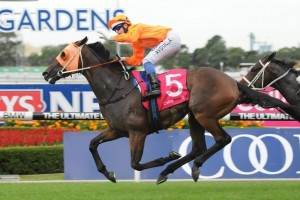 Traitor wins 2014 Phar Lap Stakes at Rosehill