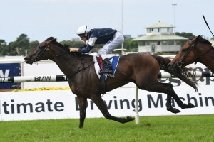 Assign Wins Neville Sellwood Stakes