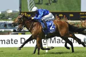 Craven Plate 2016 Betting Tips & Update