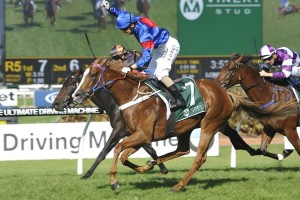 Single Gaze scores upset win in the Vinery Stud Stakes