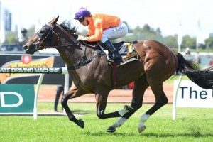 Takedown led from start to finish to win The Schweppervescence at Rosehill Gardens this afternoon. Photo by: Steve Hart