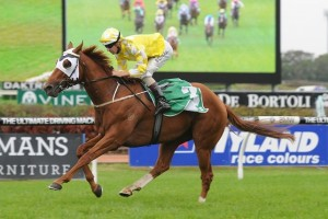 Criterion has secured a maiden Group 1 victory in the 2014 Rosehill Guineas