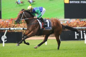 Pago Pago Stakes betting odds at Ladbrokes.com.au