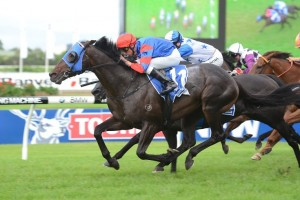 Pierro Wins 2013 George Ryder Stakes – Race Results