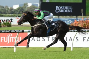 Broken Maiden Spells 2013 Victoria Derby Campaign For Drago