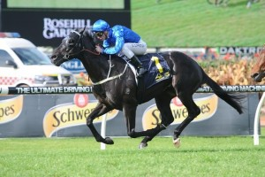 Shards is one of two Godolphin runners confirmed in the 2015 Up And Coming Stakes final field. Photo: Steve Hart