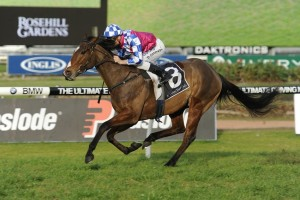 Fell Swoop leads 2016 Victory Stakes nominations. Photo: Steve Hart