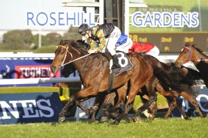 Sense Of Occasion wins the Premier's Cup at Rosehill. Photo by Steve Hart.