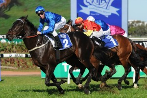 2015 Golden Rose Stakes Betting Update