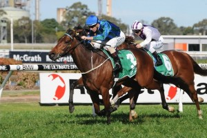 Danas Best won the Australia Day Cup but has been banned from Australian racing following his second bleeding.