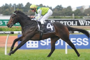 Proisir made his return to racing in over 18 months month in a barrier trial on Monday.