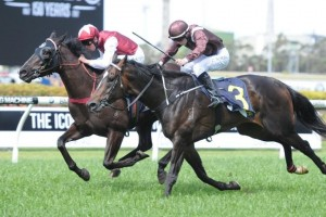 Betting Odds Update – 2013 Tulloch Stakes