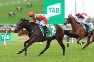 Rebel Dane has been confirmed for a first-up tilt at the 2014 T.J. Smith Stakes