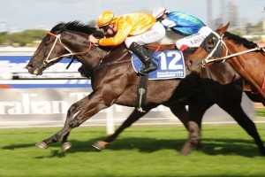 Mecir has produced a strong final straight sprint to win the 2014 Newcastle Newmarket Handicap