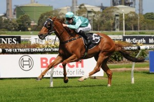 Travolta has been well backed to win the Australia Day Cup at Royal Randwick this weekend.