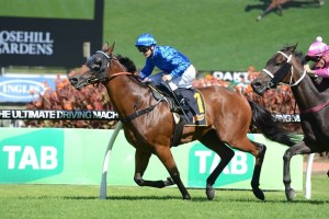 Haussmann is our pick to take out Saturday's 2015 Winter Stakes at Rosehill Gardens. Photo: Steve Hart