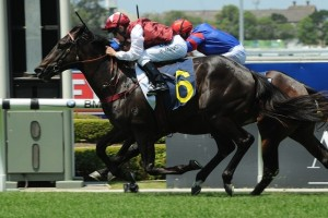 Kerrin McEvoy is hoping for success aboard Kumaon in this weekend's Champagne Stakes