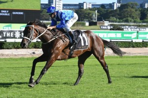 Winx wins 14 straight in Apollo Stakes