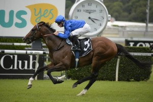 Contributer headlines the field for the Group 1 Ranvet Stakes.