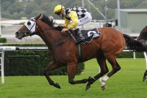 Lilliburlero winning the Group 3 Oakleigh Plate at Royal Randwick.