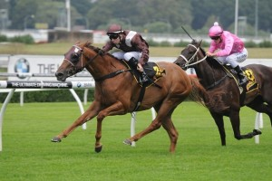 Sweet Idea has been confirmed in the final field for the 2014 Memsie Stakes