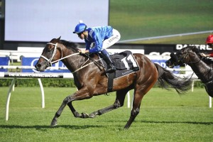 Winx made it seven wins on the trot with victory in the Chipping Norton Stakes at Randwick. Photo by Steve Hart.