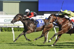 Challenge Stakes betting open at Ladbrokes.com.au
