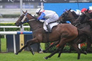 Randwick Guineas odds were short on Mosheen who beat home the boys in 2012