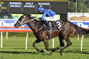 Winx wins the Doncaster Mile at Randwick in a canter. Photo by Steve Hart.