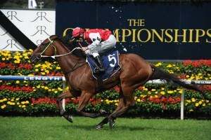 Artlee, above, is among the nominations for the QTC Cup at Eagle Farm. Photo by Steve Hart.