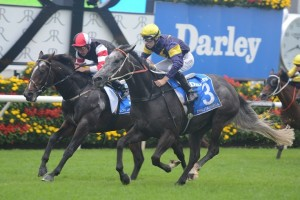 Chautauqua stormed home to win the 2015 TJ Smith Stakes this afternoon. Photo: Steve Hart