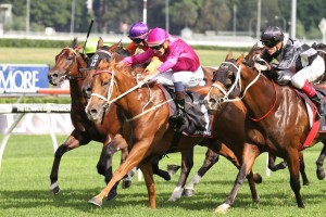 2016 Concorde Stakes Odds and Betting Update