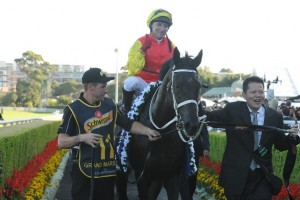 Sydney Cup odds were long on the 2015 winner Grand Marshal
