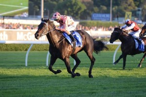 Black Caviar's (pictured) relation Sistonic will look to impress at Moonee Valley on Friday night.