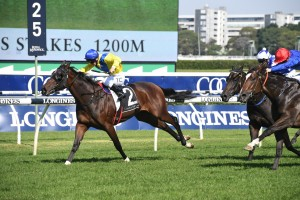 Anaheed, above in yellow colours, holds on to win the 2019 Percy Sykes Stakes at Randwick. Photo by Steve Hart.
