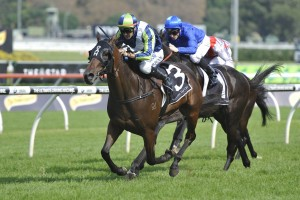 Latest All-In 2016 Cantala Stakes Betting Markets