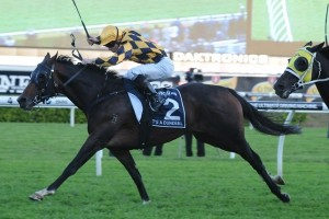 It's A Dundeel scored his sixth win at Group 1 level in the 2014 Queen Elizabeth Stakes.