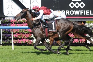 Sidestep scored a narrow win from Bounding in the 2014 Royal Sovereign Stakes at Royal Randwick.